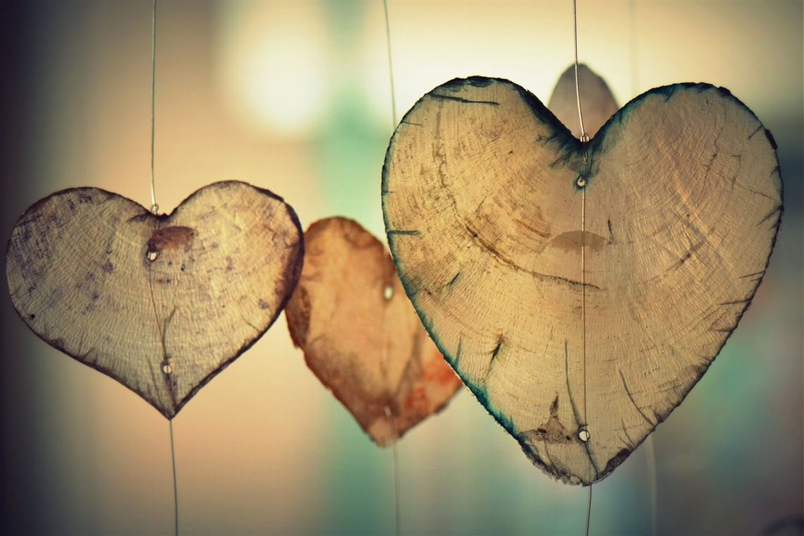 Hearts made out of tree